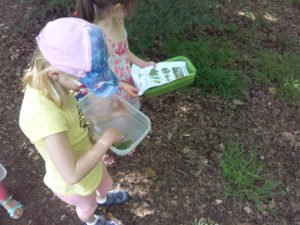 Les enfants récoltent leurs feuilles dans leurs petites boites.